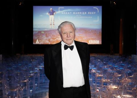 David Attenborough at Great Barrier Reef screening